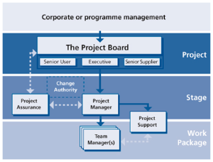 directing projects senior management diagram 1 small